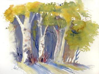Aquarell, Bäume, Trees, Baum, Birke, Walter Lechthaler